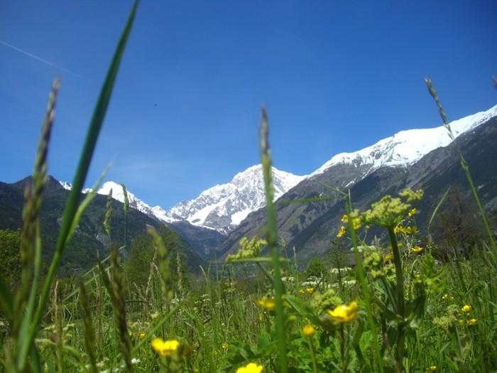 Terreni agricoli ai piedi del Monte Bianco