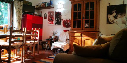 Caratteristico appartamento nel cuore della Valdigne